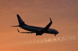 wagonist24wさんが、那覇空港で撮影した全日空 737-881の航空フォト(写真)