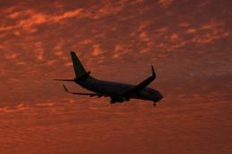 wagonist24wさんが、那覇空港で撮影したソラシド エア 737-86Nの航空フォト(写真)
