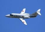 VIPERさんが、米子空港で撮影した航空自衛隊 T-400の航空フォト(写真)