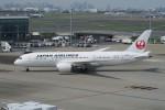 職業旅人さんが、羽田空港で撮影した日本航空 787-8 Dreamlinerの航空フォト(写真)