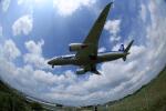 Boeing787NH051さんが、伊丹空港で撮影した全日空 787-8 Dreamlinerの航空フォト(写真)