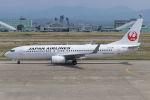 まんぼ しりうすさんが、小松空港で撮影した日本航空 737-846の航空フォト(写真)