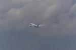 シャークレットさんが、羽田空港で撮影した全日空 787-9の航空フォト(写真)