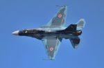 こびとさんさんが、岩国空港で撮影した航空自衛隊 F-2Bの航空フォト(写真)
