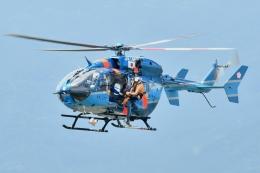 酒匂川スポーツ広場で撮影された酒匂川スポーツ広場の航空機写真