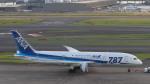 a5xysvi1さんが、羽田空港で撮影した全日空 787-8 Dreamlinerの航空フォト(写真)