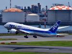 tsubasa0423さんが、羽田空港で撮影した全日空 787-8 Dreamlinerの航空フォト(写真)