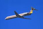 動物村猫君さんが、大分空港で撮影した日本エアシステム MD-81 (DC-9-81)の航空フォト(写真)