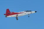 あずち88さんが、岐阜基地で撮影した防衛装備庁 X-2 (ATD-X)の航空フォト(写真)