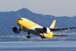 ShiShiMaRu83さんが、関西国際空港で撮影したスクート 787-8 Dreamlinerの航空フォト(写真)
