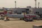 Rsaさんが、ドンムアン空港で撮影したタイ・ライオン・エア 737-9GP/ERの航空フォト(写真)