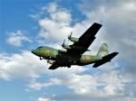 おっつんさんが、入間飛行場で撮影した航空自衛隊 C-130H Herculesの航空フォト(写真)