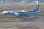 amagoさんが、羽田空港で撮影した全日空 787-8 Dreamlinerの航空フォト(写真)