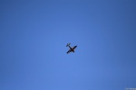 Jin Bergqiさんが、海浜幕張公園で撮影したザルツブルク・ジェット・アビエーション EA-300LCの航空フォト(写真)