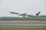 シャークレットさんが、新千歳空港で撮影したKLMオランダ航空 777-306/ERの航空フォト(写真)