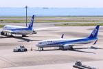 timeさんが、羽田空港で撮影した全日空 737-881の航空フォト(写真)