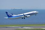 パンダさんが、羽田空港で撮影した全日空 737-881の航空フォト(写真)