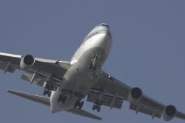 senyoさんが、羽田空港で撮影した日本航空 747-446Dの航空フォト(写真)