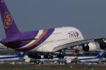 多楽さんが、成田国際空港で撮影したタイ国際航空 A380-841の航空フォト(写真)
