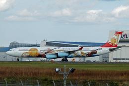kansaigroundさんが、成田国際空港で撮影したオーストリア航空 A340-313Xの航空フォト(写真)