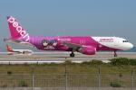 つみネコ♯2さんが、関西国際空港で撮影したピーチ A320-214の航空フォト(写真)
