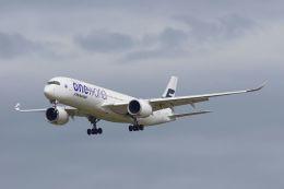 ladyinredさんが、成田国際空港で撮影したフィンエアー A350-941XWBの航空フォト(写真)