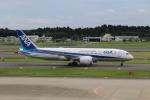 ペソ928さんが、成田国際空港で撮影した全日空 787-8 Dreamlinerの航空フォト(写真)