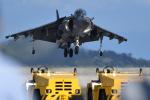 ばとさんが、岩国空港で撮影したアメリカ海兵隊 AV-8B(R) Harrier II+の航空フォト(写真)