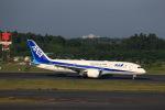 JA946さんが、成田国際空港で撮影した全日空 787-8 Dreamlinerの航空フォト(写真)