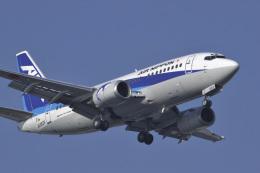 senyoさんが、羽田空港で撮影したエアーニッポン 737-5Y0の航空フォト(写真)