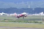多楽さんが、仙台空港で撮影したピーチ A320-214の航空フォト(写真)
