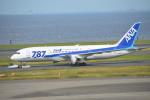 むねくんさんが、羽田空港で撮影した全日空 787-8 Dreamlinerの航空フォト(写真)