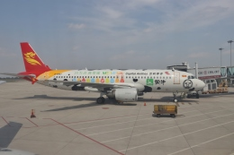 合肥新橋国際空港 - Hefei Xinqiao International Airport [HFE/ZSOF]で撮影された合肥新橋国際空港 - Hefei Xinqiao International Airport [HFE/ZSOF]の航空機写真
