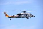 Aurora56さんが、厚木飛行場で撮影したアメリカ海軍 MH-60S Knighthawk (S-70A)の航空フォト(写真)