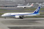 Echo-Kiloさんが、羽田空港で撮影した全日空 787-8 Dreamlinerの航空フォト(写真)