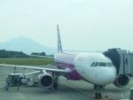 東亜国内航空さんが、鹿児島空港で撮影したピーチ A320-214の航空フォト(写真)