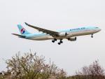 Mame @ TYOさんが、成田国際空港で撮影した大韓航空 A330-322の航空フォト(写真)