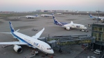 Koenig117さんが、羽田空港で撮影した全日空 787-8 Dreamlinerの航空フォト(写真)