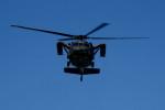 kij niigataさんが、新発田駐屯地で撮影した陸上自衛隊 UH-60JAの航空フォト(写真)