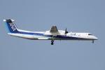 tyusonさんが、成田国際空港で撮影したANAウイングス DHC-8-402Q Dash 8の航空フォト(写真)