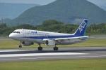 qooさんが、高松空港で撮影した全日空 A320-211の航空フォト(写真)