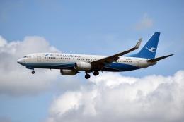 sonnyさんが、成田国際空港で撮影した厦門航空 737-85Cの航空フォト(写真)