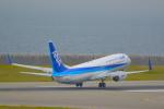 toyoquitoさんが、神戸空港で撮影した全日空 737-881の航空フォト(写真)