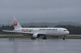 女満別空港 - Memambetsu Airport [MMB/RJCM]で撮影された女満別空港 - Memambetsu Airport [MMB/RJCM]の航空機写真