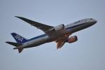 ガミコさんが、成田国際空港で撮影した全日空 787-8 Dreamlinerの航空フォト(写真)