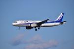 flying-dutchmanさんが、成田国際空港で撮影した全日空 A320-211の航空フォト(写真)