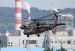 なごやんさんが、名古屋飛行場で撮影した陸上自衛隊 UH-60JAの航空フォト(写真)