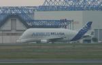 ころころさんが、トゥールーズ・ブラニャック空港で撮影したエアバス・トランスポート・インターナショナル A300B4-608STの航空フォト(写真)