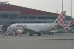 ころころさんが、トゥールーズ・ブラニャック空港で撮影したボロテア A319-111の航空フォト(写真)
