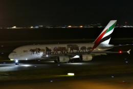 リリココさんが、中部国際空港で撮影したエミレーツ航空 A380-861の航空フォト(写真)